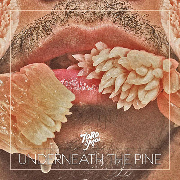 Toroymoi-underneath-the-pine-cover-art