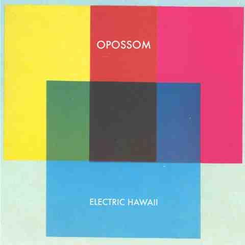 Opossom electric hawaï