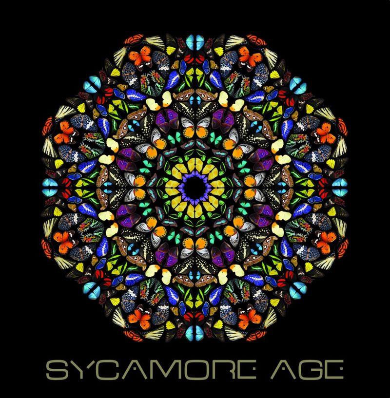 SycamoreAgepochette-1003x1024